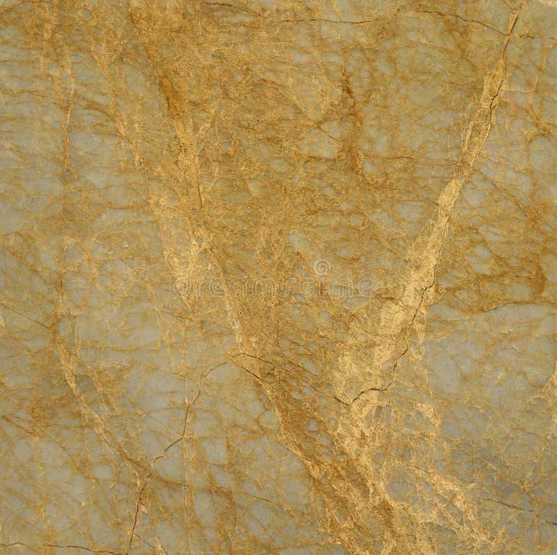 Pietra del marmo della vena dell'oro immagini stock