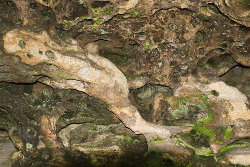 Pietra della caverna con la muffa verde immagini stock