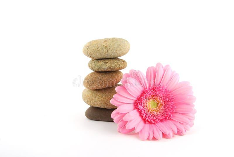 Pietra e fiore della stazione termale immagine stock libera da diritti