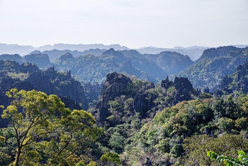 Pietra Forest In Laos fotografia stock libera da diritti