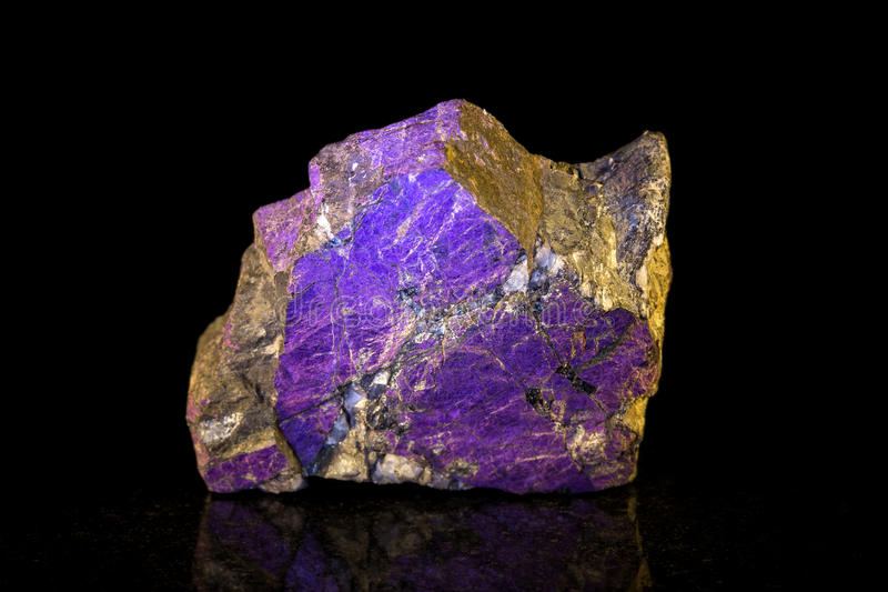 Pietra minerale di Purpurite davanti al nero immagine stock