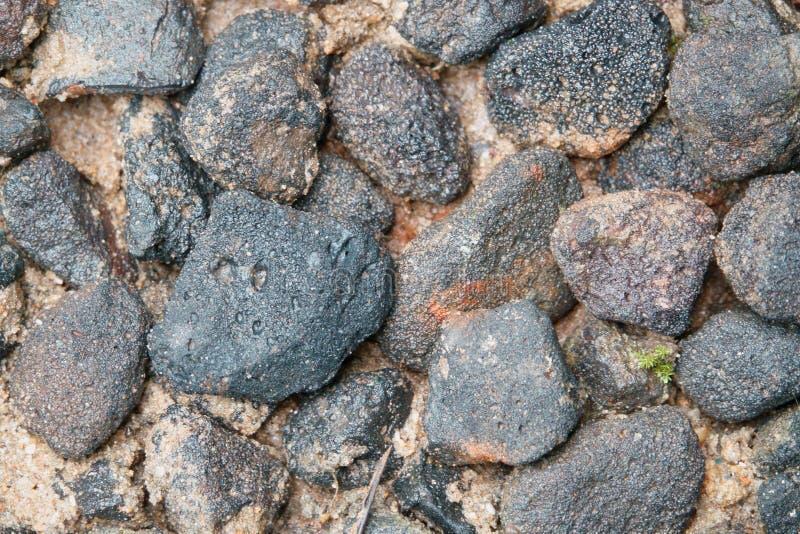 Pietra nera sulla sabbia bagnata fotografia stock libera da diritti
