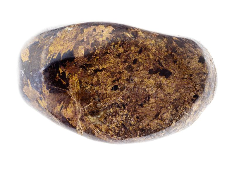 pietra preziosa lucidata di Bronzite su bianco immagini stock libere da diritti