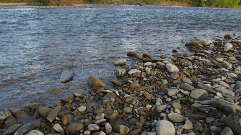 Pietre bagnate del fiume nell'acqua riverbank fotografia stock libera da diritti