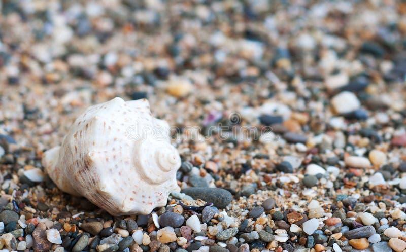 Pietre della spiaggia fotografie stock