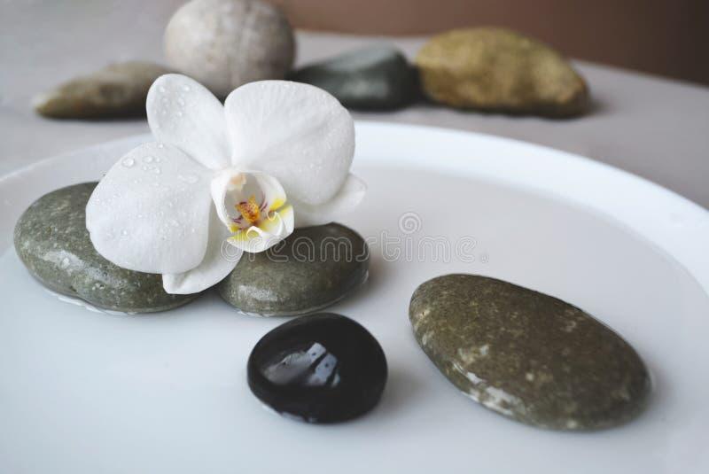 Pietre della stazione termale e fiore dell'orchidea fotografia stock libera da diritti