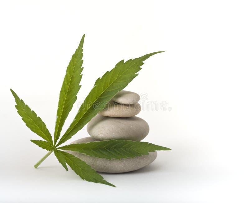 Pietre di zen del foglio della marijuana fotografie stock libere da diritti