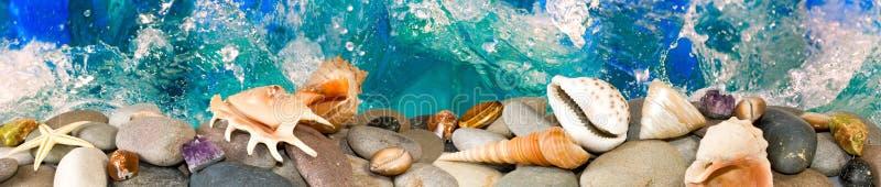 Download Pietre e coperture fotografia stock. Immagine di seashell - 56882522
