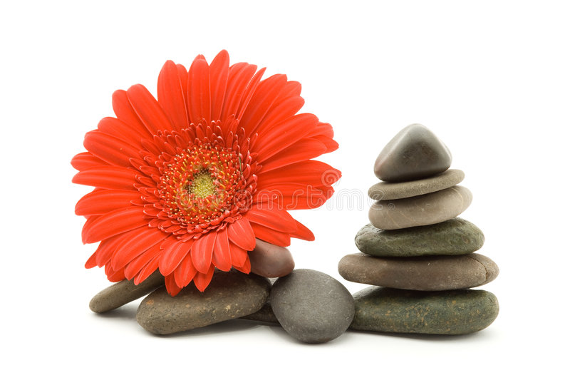 Pietre e fiore di zen fotografia stock libera da diritti