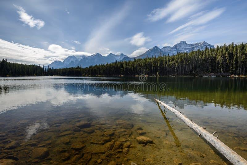 Pietre e Rocky Mountains subacquei vicino a Herbert Lake fotografia stock libera da diritti