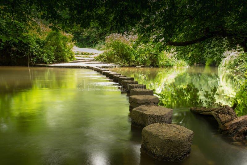 Pietre facenti un passo Boxhill, Surrey, Inghilterra g immagine stock