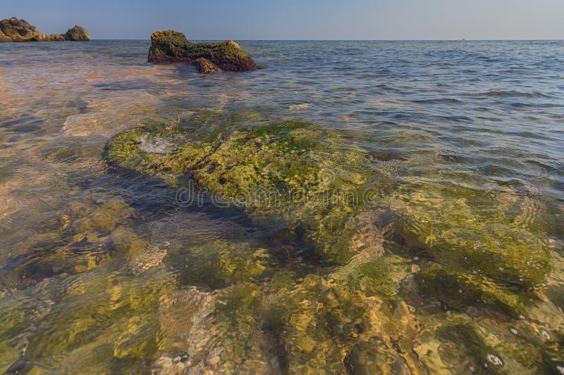 Pietre, invase con le alghe in chiaro verde smeraldo ed acqua della perla di Mar Nero immagine stock libera da diritti