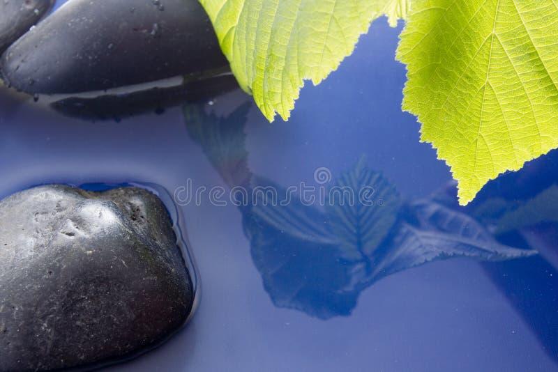 Download Pietre liscie in acqua fotografia stock. Immagine di scintillare - 55359698