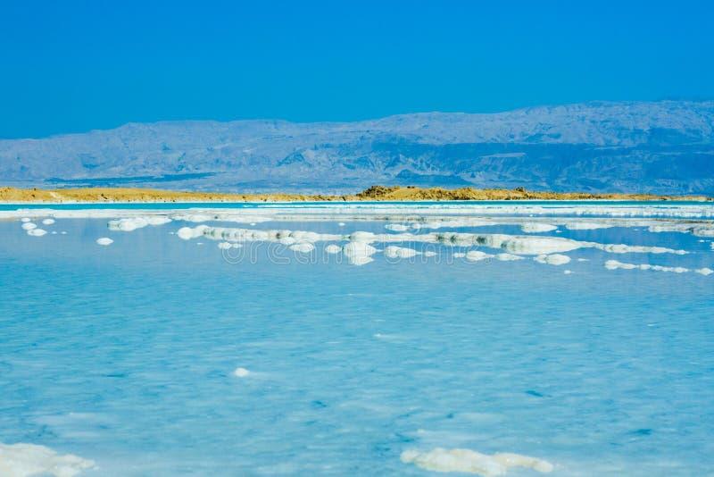 Pietre sulla banca del mar Morto immagine stock libera da diritti