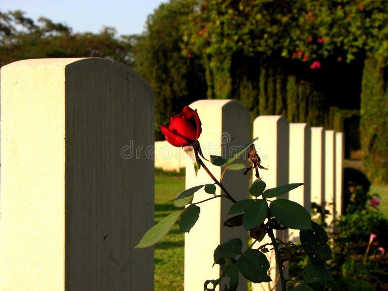 Pietre tombali del n della Rosa fotografie stock