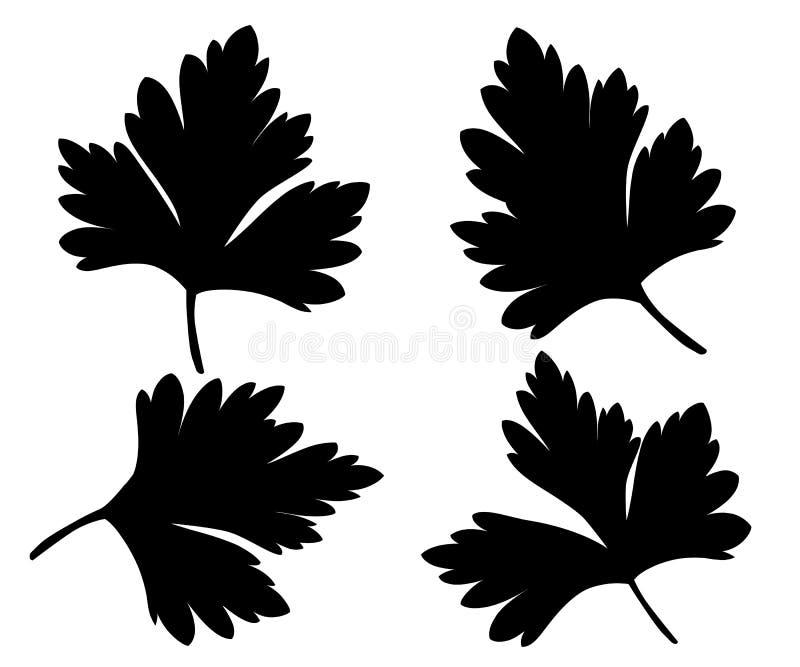 Pietruszka odizolowywająca na białych czarnych sylwetek projekta ilustracyjnym elemencie w kulinarnej kulinarnej składnika pakunk ilustracji