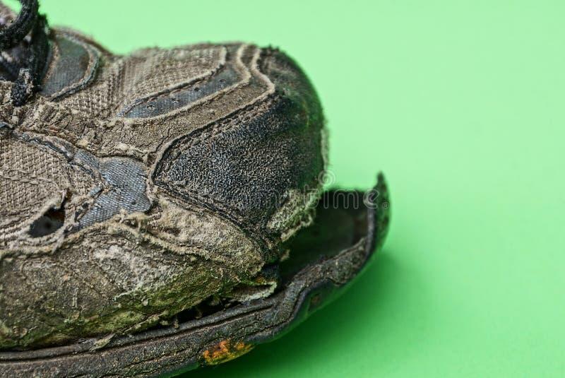 Pieza de una zapatilla de deporte vieja gris con un lenguado rasgado en un fondo verde fotos de archivo libres de regalías