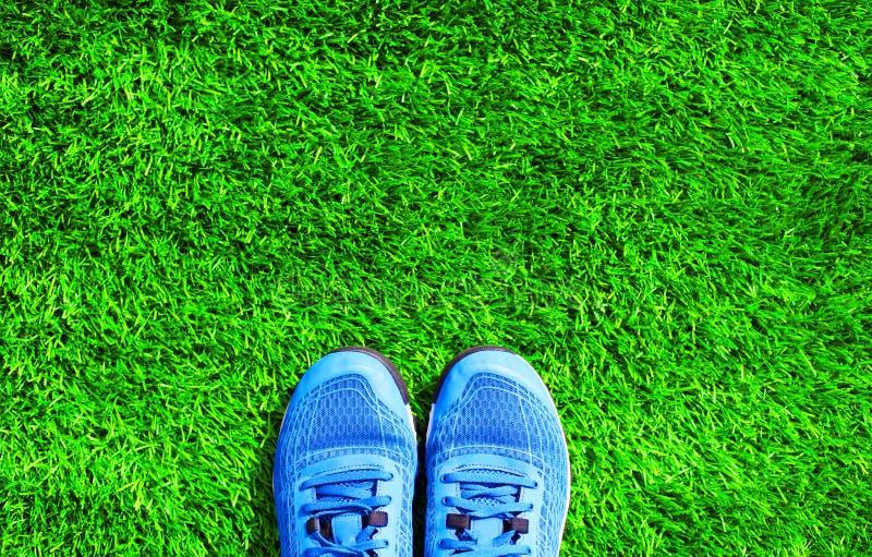Pieza las zapatillas de deporte de los deportes del azul en la hierba verde texturizada imágenes de archivo libres de regalías