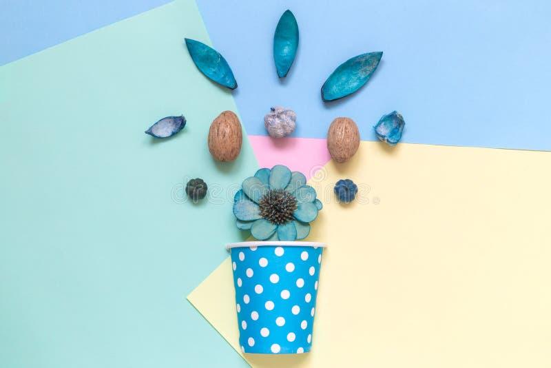 Piezas de planta secadas con la taza de papel aislada en concepto minimalistic azul fotografía de archivo
