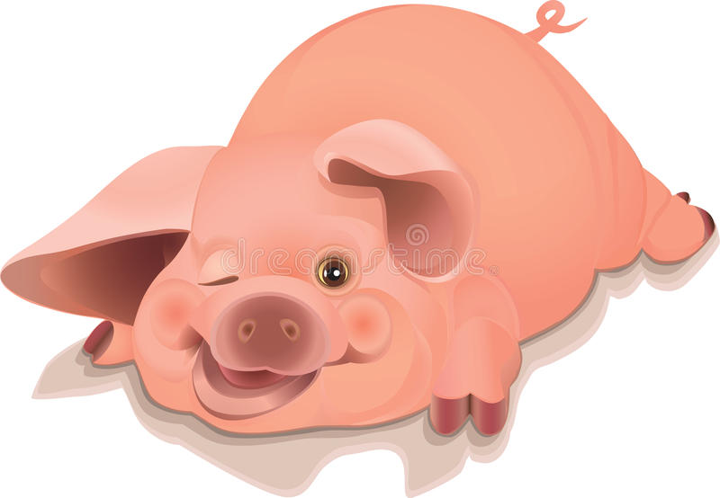 Pig. Vector illustration of a funny piglet royalty free illustration