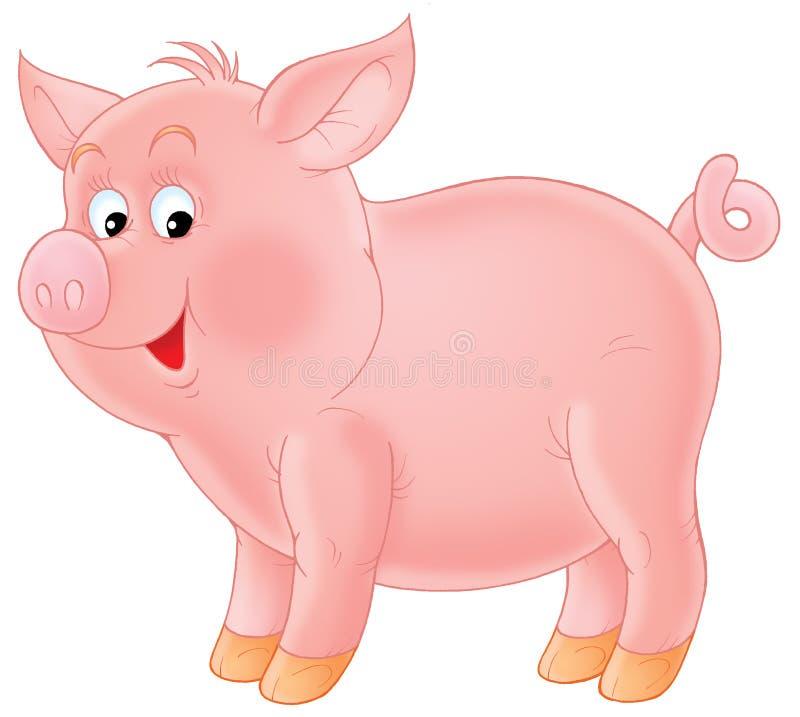 Free Pig Stock Photo - 1575000