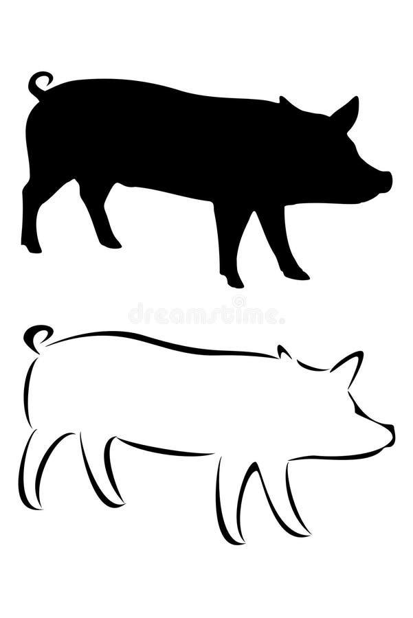 Pig stock illustration