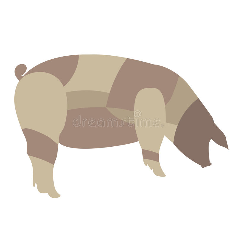 Pig With Butchers Diagram On It Stock Vector Illustration Of
