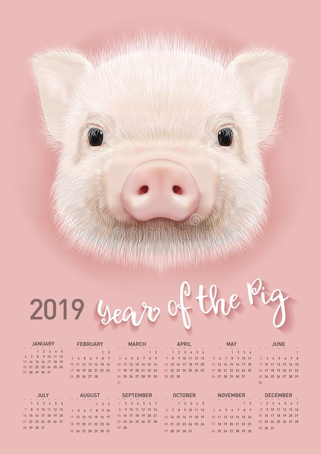 Pig calendar for 2019. Vector editable template with concept. Symbol of the year in the Chinese calendar. Realistic vector illustration stock illustration