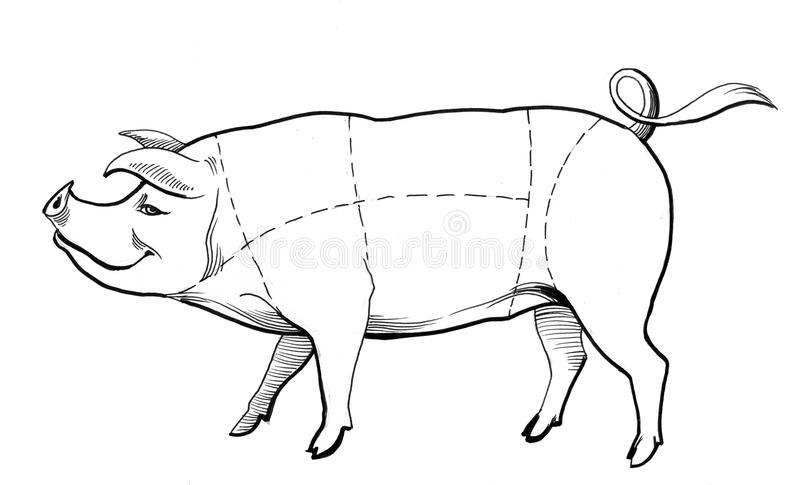 pork chart stock illustrations  u2013 566 pork chart stock illustrations  vectors  u0026 clipart