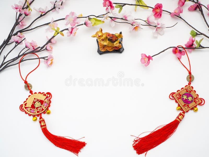 Pig 2019 Chinese New Year stock image