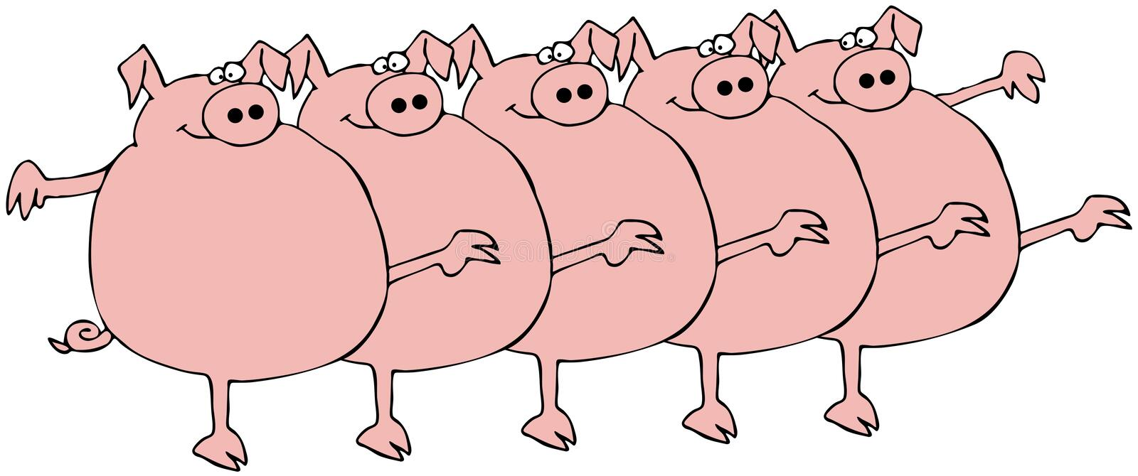 Pig Chorus Line. This illustration depicts five pigs dancing in unison royalty free illustration