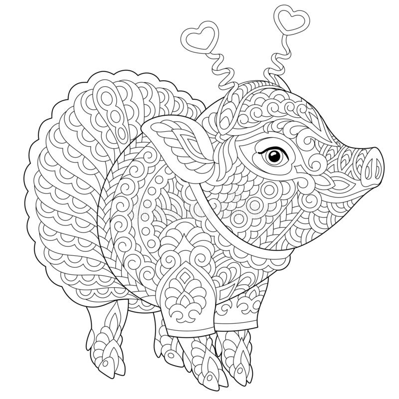 Zentangle pig piggy coloring page royalty free stock image