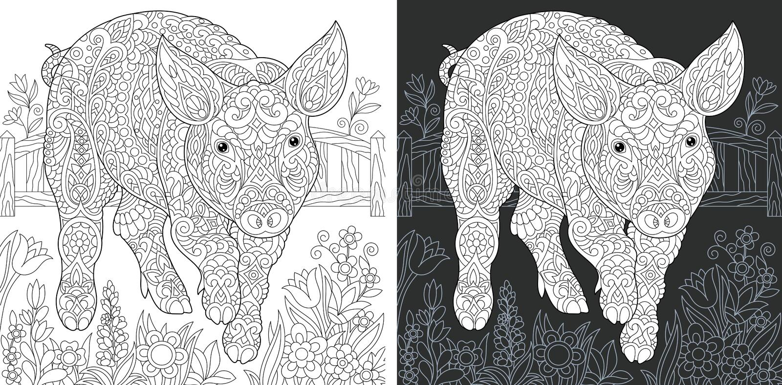 Pig Coloring Page. Pig. Coloring Page. Coloring Book. Colouring picture with piggy drawn in zentangle style. Antistress freehand sketch drawing. Vector stock illustration