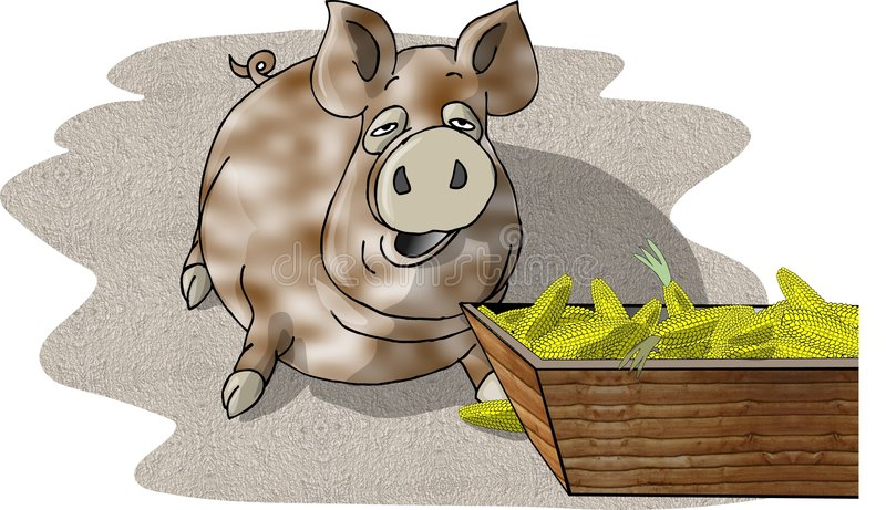 Download Pig eating from a trough stock illustration. Image of pork - 48808