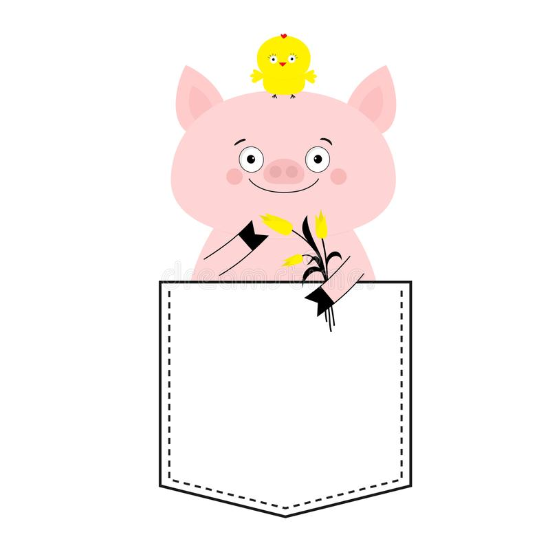 Pig face head in the pocket. Chicken bird, tulip. Cute cartoon animals. Piggy piglet character. Dash line. White and black color. royalty free illustration
