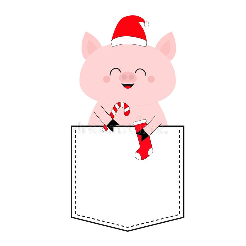 Pig face head in the pocket. Santa hat, candy cane, sock. Cute cartoon animals. Piggy piglet character. Dash line. White and black. Color. T-shirt design. Baby stock illustration