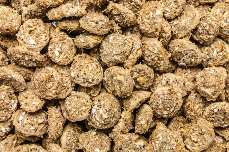 Download Pig food weight gain stock image. Image of breed, agriculture - 28158427