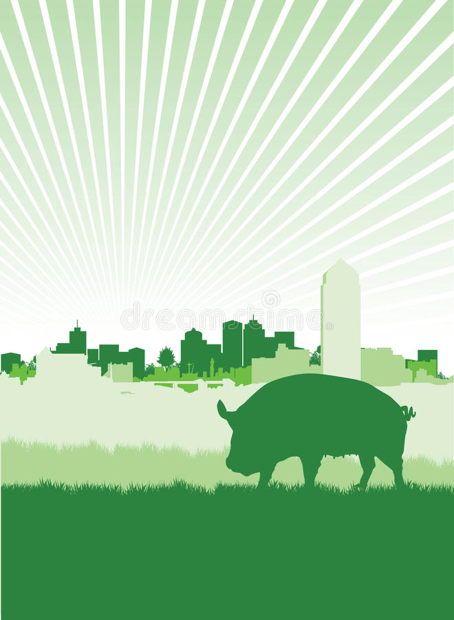 Download Pig on a meadow stock vector. Image of meadow, graze - 15973770