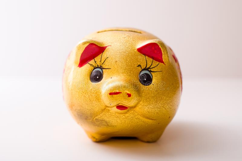 The pig piggy bank. Golden piggy bank isolated with clippingpath included royalty free stock image