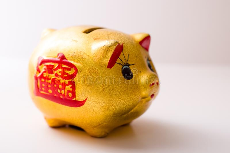 The pig piggy bank. Golden piggy bank isolated with clippingpath included stock images