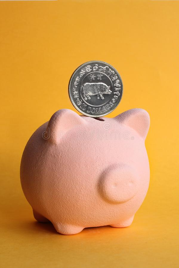Pig piggy bank pink on a yellow background with a coin depicting a pig royalty free stock image
