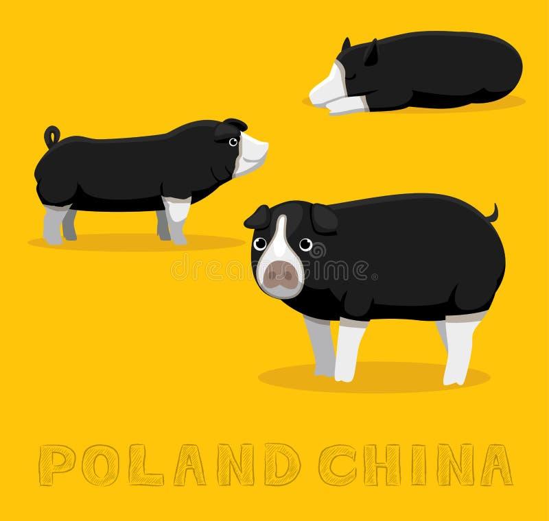 Pig Poland China Cartoon Vector Illustration Stock Vector