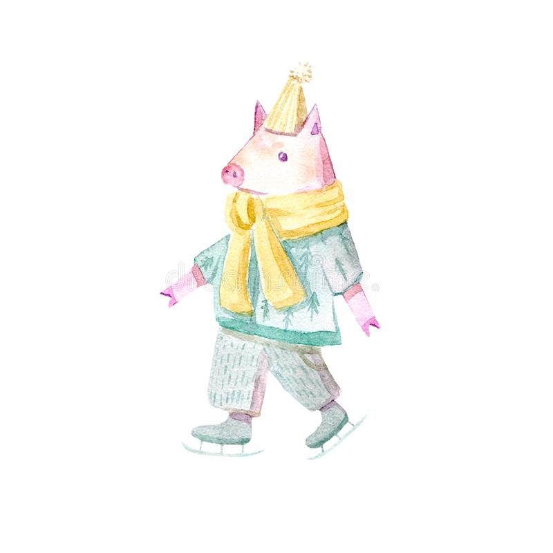 Pig on a skates .Symbol of the new year. Watercolor hand drawn illustration.White background vector illustration