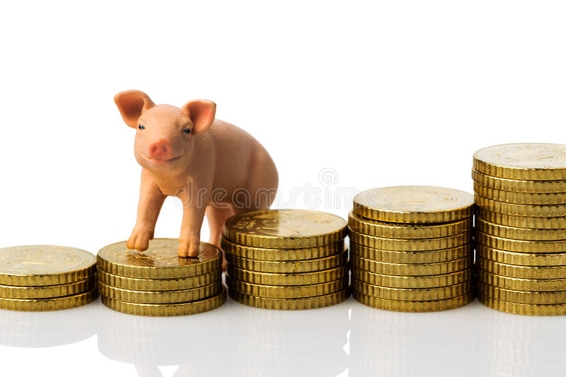 Pig on stack of coins stock photos