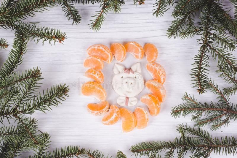 Pig - the symbol of the year, molded by child in a frame of tangerine slices and fir branches. kid`s art concept. Christmas & Ne stock photos