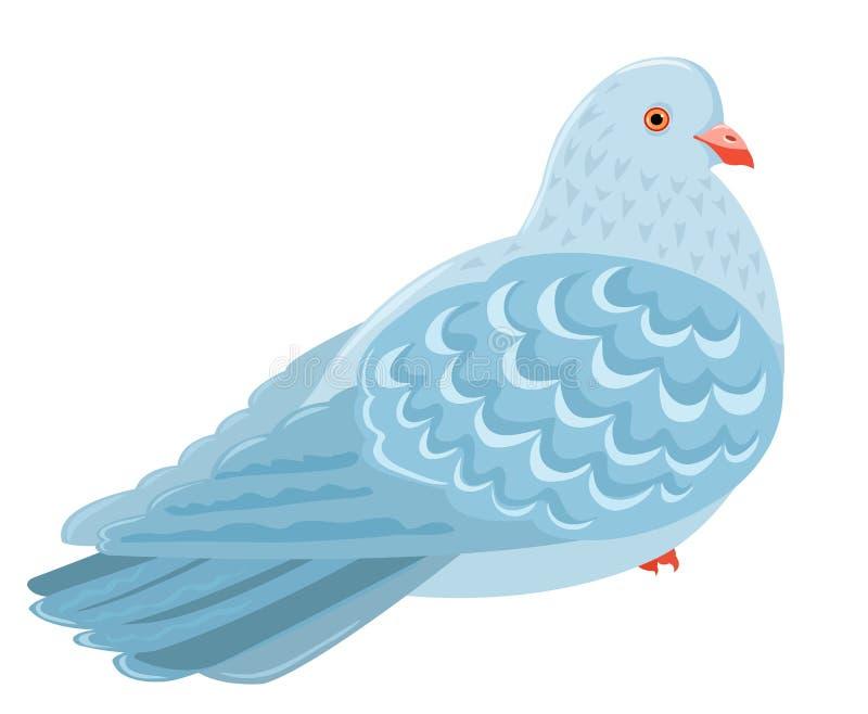 Pigeon stock illustration