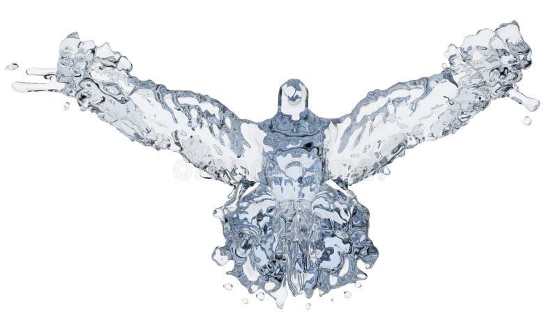 Pigeon de l'eau illustration libre de droits
