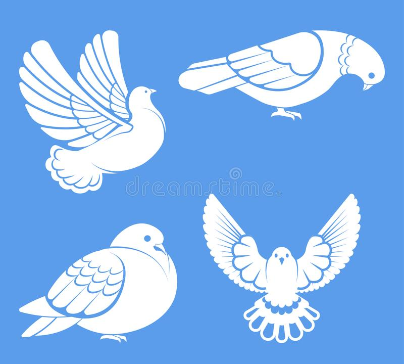 Pigeon or dove, white bird flying with spread wings in sky or sitting set. vector illustration