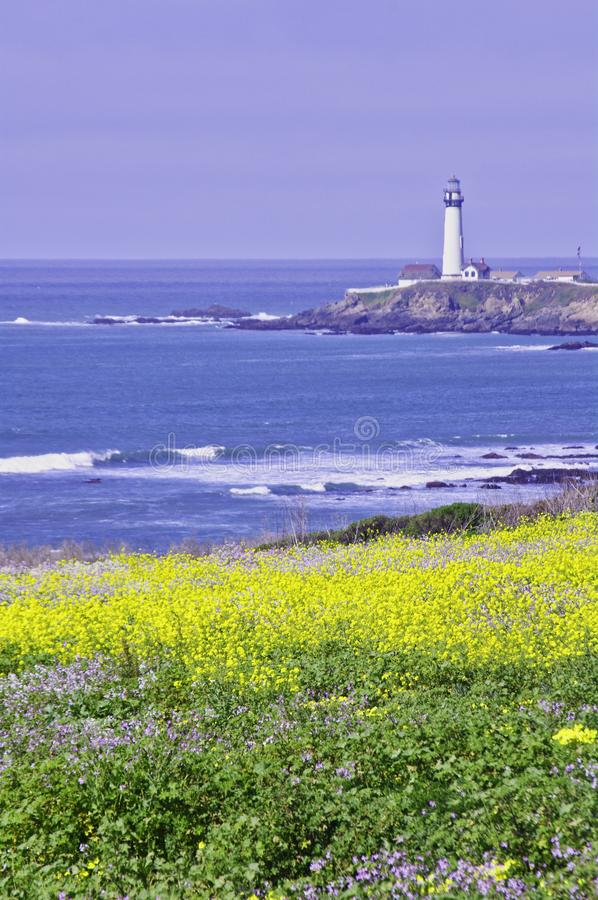 Pigeon Point Light House. Pigeon Point lighthouse with blue ocean and surf with wild mustard in the foreground royalty free stock photo
