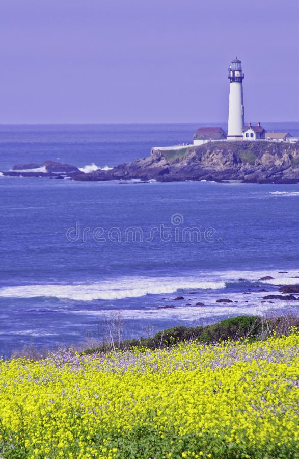 Pigeon Point Light House. Pigeon Point lighthouse with blue ocean and surf with wild mustard in the foreground royalty free stock images